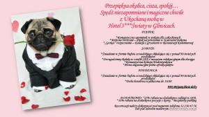 romantyczna-kolacja-Gliwice-pakiet-walentynkowy-spa-gliwice-menu -hotel-restauracja